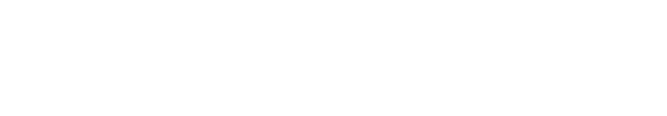 Enterprise FL logo